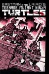 Teenage Mutant Ninja Turtle front cover